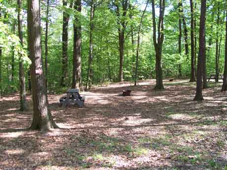 Primitive Tent Sites at Lake Raystown Family Camping Resort